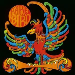 CD Shop - RARE BIRD RARE BIRD