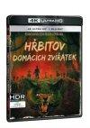 CD Shop - HřBITOV DOMáCíCH ZVířáTEK 2BD (UHD+BD)