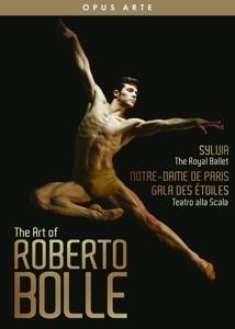CD Shop - BOLLE, ROBERTO ART OF ROBERTO BOLLE