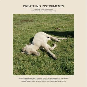 CD Shop - V/A BREATHING INSTRUMENTS