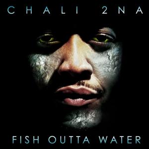 CD Shop - CHALI 2NA FISH OUTTA WATER