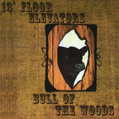 CD Shop - 13TH FLOOR ELEVATORS BULL OF THE WOODS