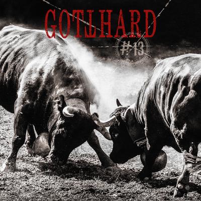 CD Shop - GOTTHARD # 13