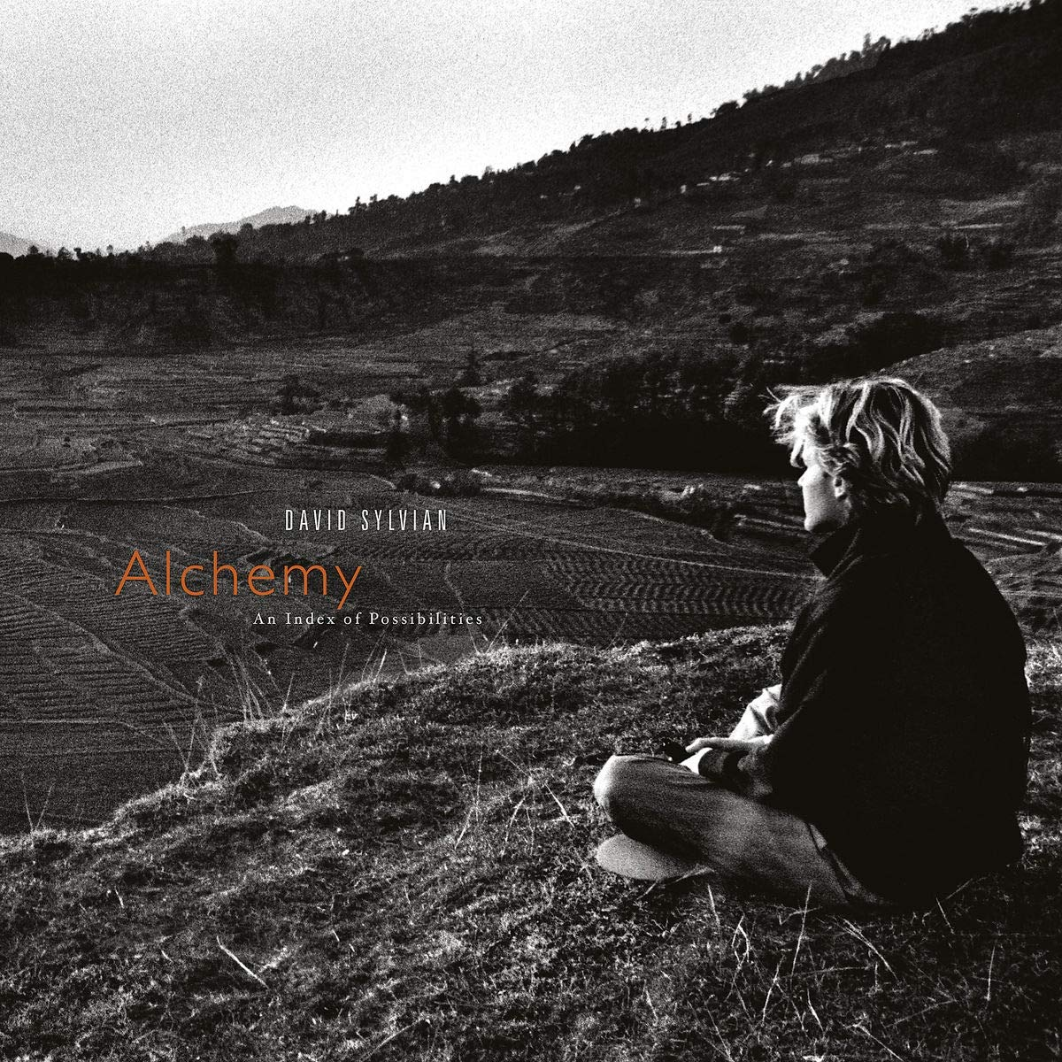 CD Shop - SYLVIAN DAVID ALCHEMY: AN INDEX OF...