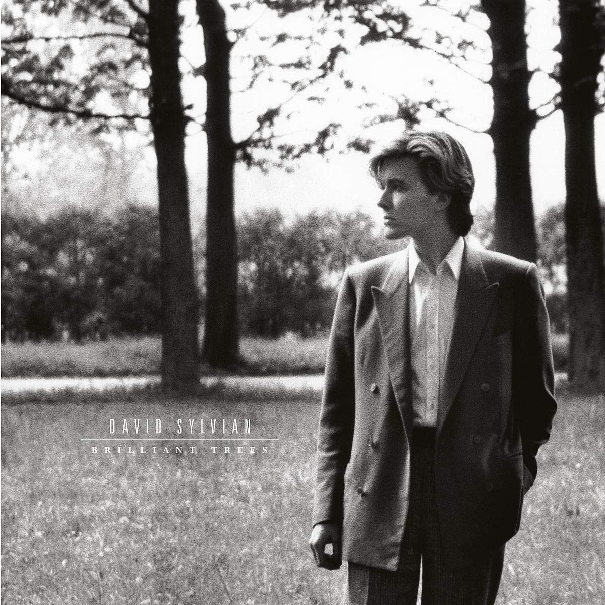 CD Shop - SYLVIAN DAVID BRILLIANT TREES