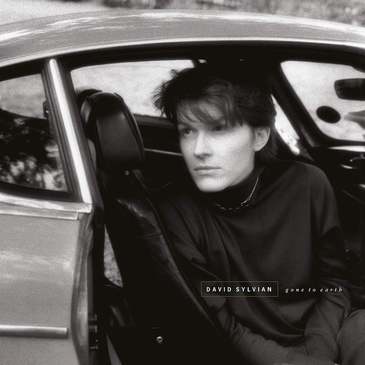 CD Shop - SYLVIAN DAVID GONE TO EARTH