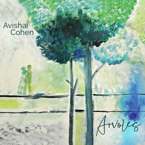 CD Shop - COHEN, AVISHAI ARVOLES