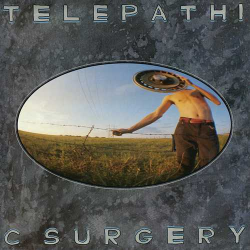 CD Shop - FLAMING LIPS, THE TELEPATHIC SURGERY