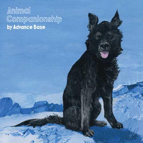 CD Shop - ADVANCE BASE ANIMAL COMPANIONSHIP