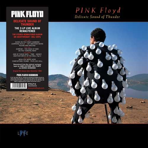 CD Shop - PINK FLOYD DELICATE SOUND OF THUNDER