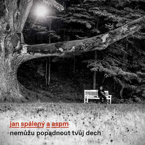 CD Shop - SPALENY, JAN & ASPM NEMUZU POPADNOUT TVUJ DECH