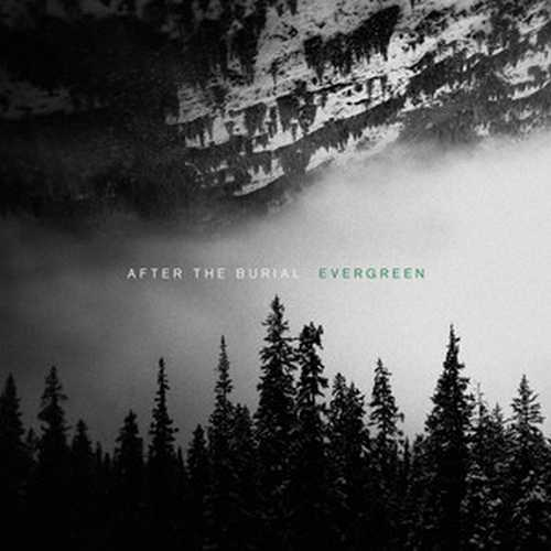 CD Shop - AFTER THE BURIAL EVERGREEN